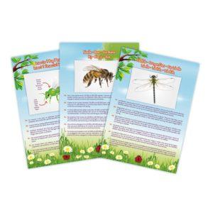 vysavač na chrobáky, experimenty pre deti, experimentálne sady pre deti, botanika, biológia - aktivity pre deti