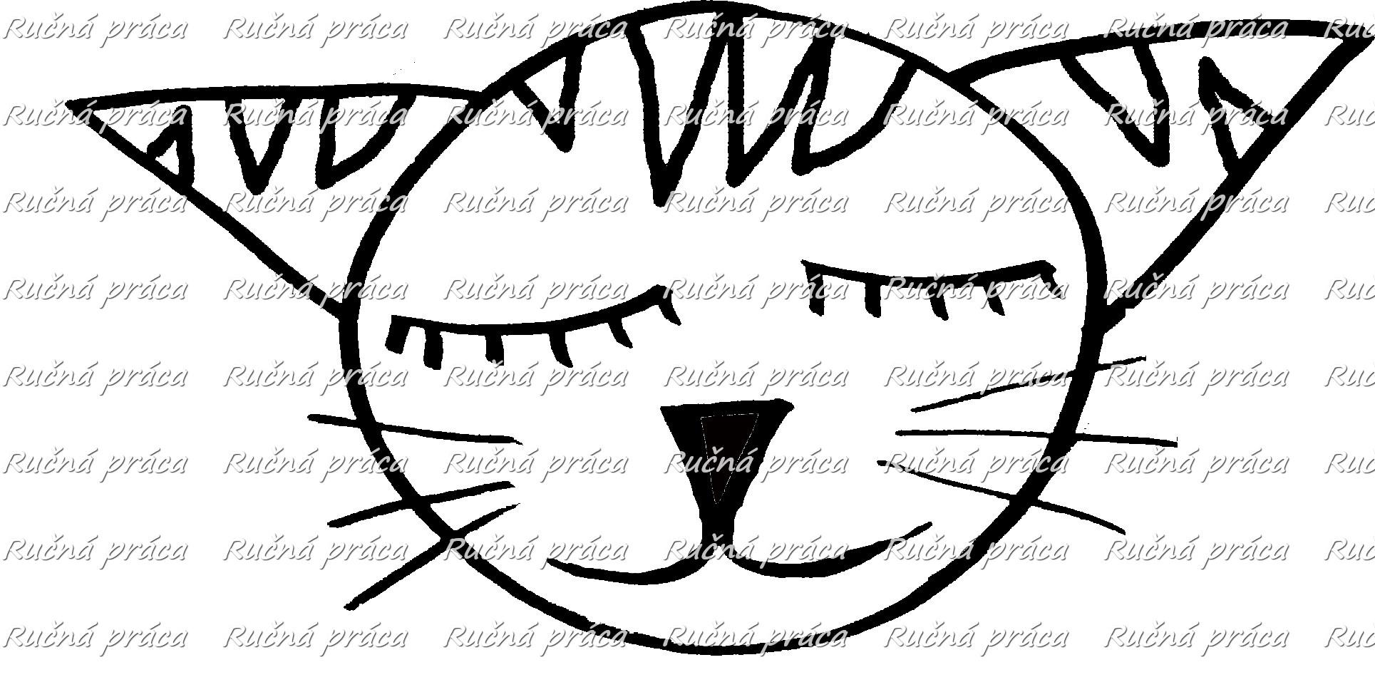 Zvieracia reč tela: Prečo pes a mačka je večná naháňačka?