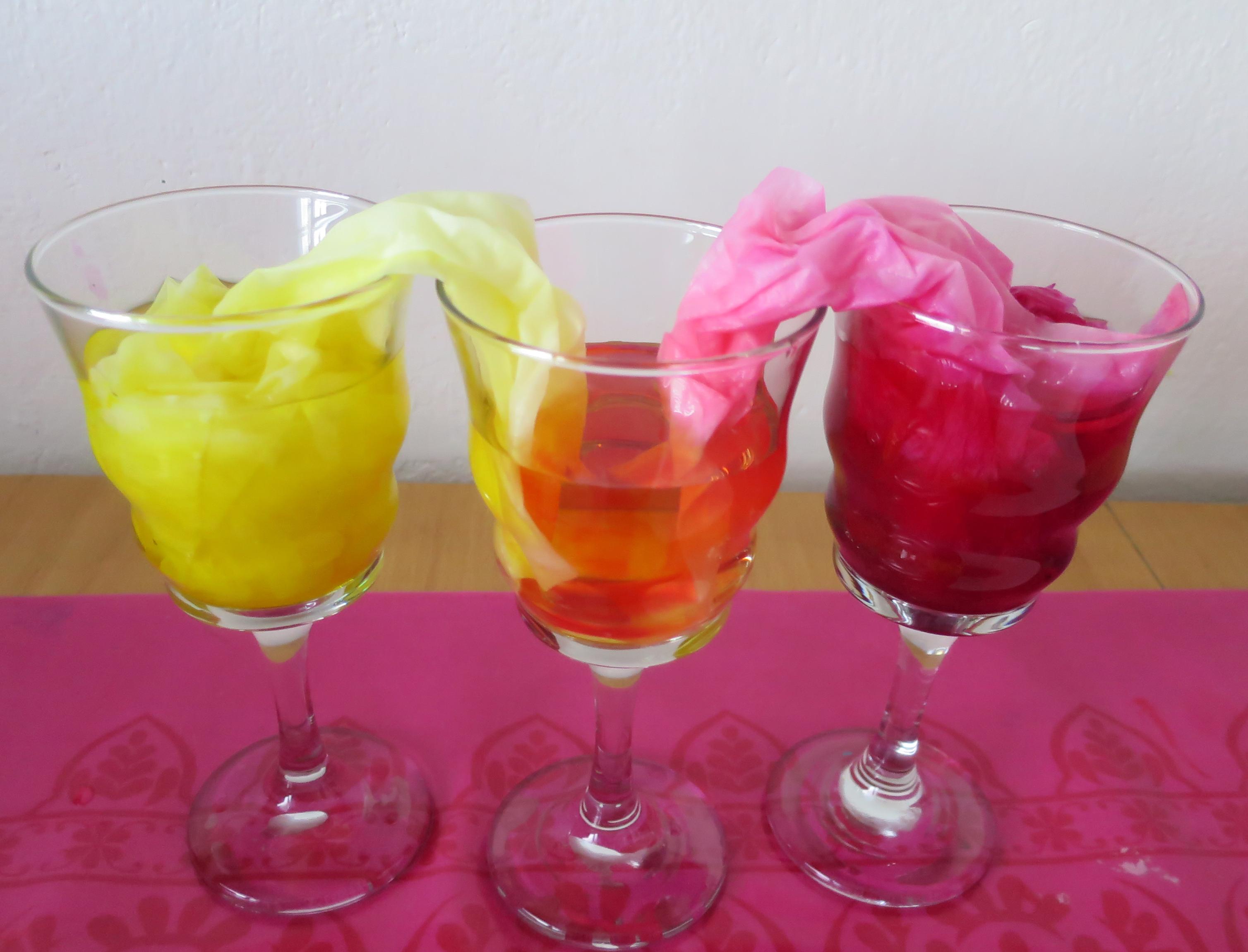 Experimenty s deťmi: Miešanie farieb a vzlínanie vody