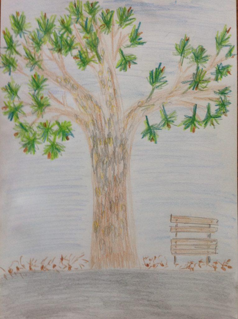 Stromy 2017 - Smrekovec opadavý