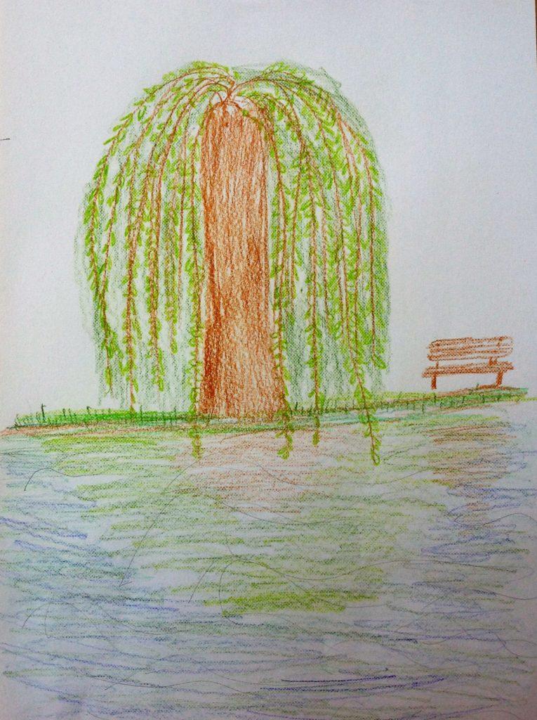 Stromy 2017 - Smutná vŕba - odraz na vode