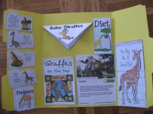 Montessori lapbook