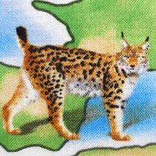 Zvieratá podľa kontinentov